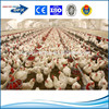 q235/345 steel material for steel structure chicken house and prefabricated chicken house
