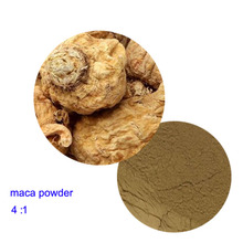 High quality maca powder maca extract 4:1