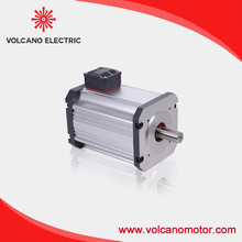 low voltage 12v electric Brushless DC Motor 600W