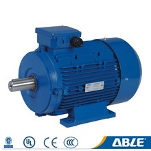 Ac able aluminum high performance low voltage electric motor