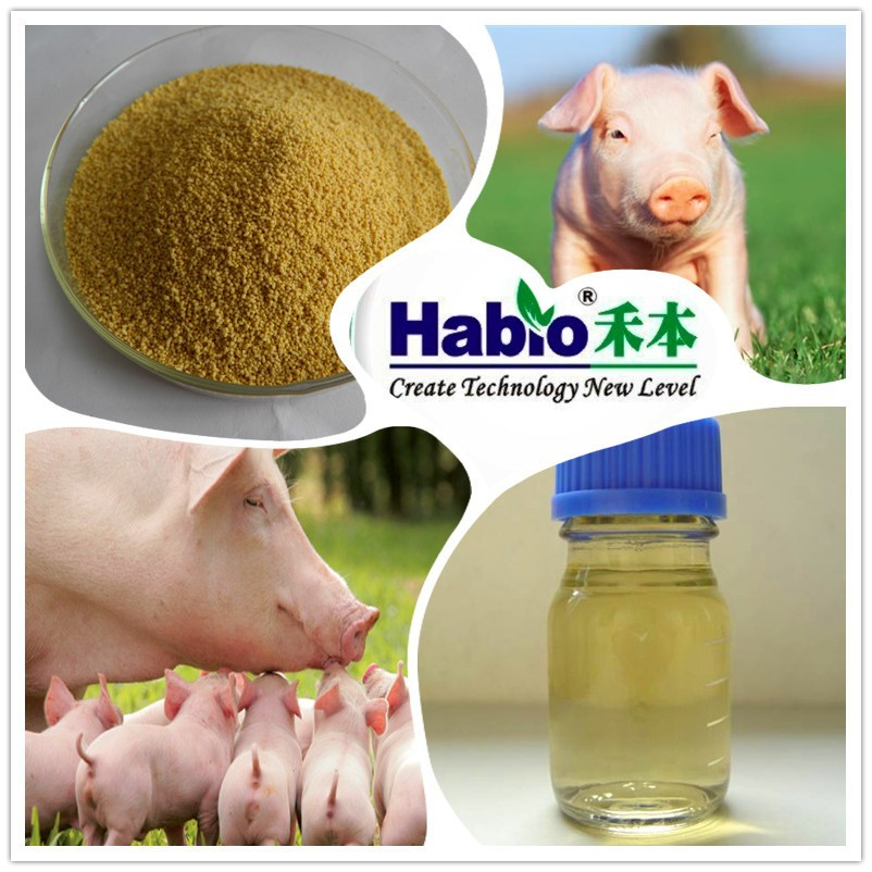 High efficiency!! Pig Feed supplement phytase enzyme