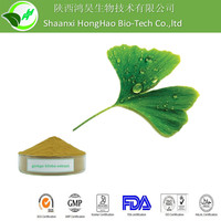 Anti-aging GMP/ISO/KOSHER Organic 24% Ginkgo Flavone Ginkgo Extract/ginkgo biloba extract