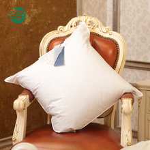 Decorative soft Throw Inner Cushions feather pillow inserts 18x18