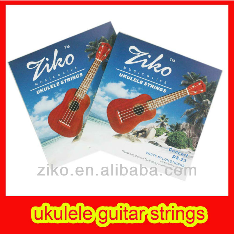 nylon strings of musical instrument of thailand