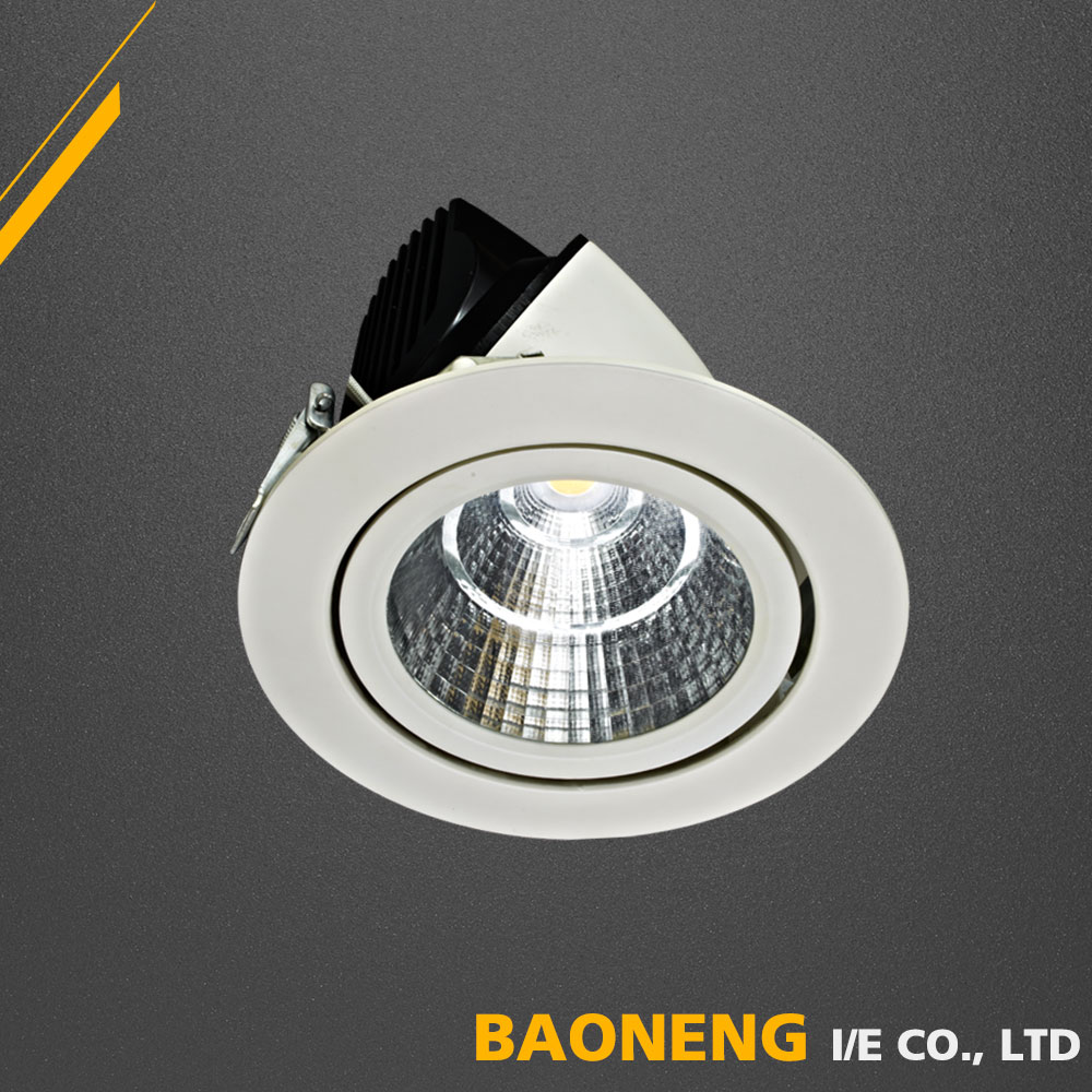 White Dimmable Ra80 COB 20W LED Lighting Light Ceiling Spot Light