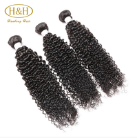 Suppliers Vendor New arrival Wholesale Best Price Raw Afro Kinky Human Hair For Braiding