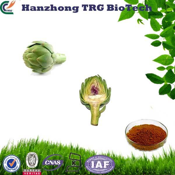 free sample pharmaceutical grade artichoke leaf extract powder with CE certificate
