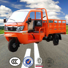 China BeiYi DaYang Chinese New Cheap Adult Electric Tricycle Motorcycle Truck 3-Wheel Tricycle car for sale