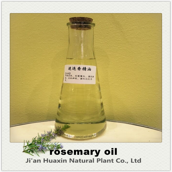 Low price Essential Rosemary Oil For Hair growth