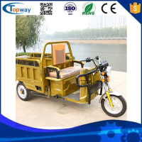 goods loader Strong power 1000W 60V cargo tricycle 3 wheel electric bicycle