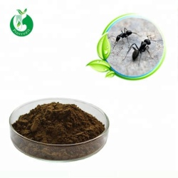 Black Ant Sex Pills/Black Ant Extract/Black Ant Powder