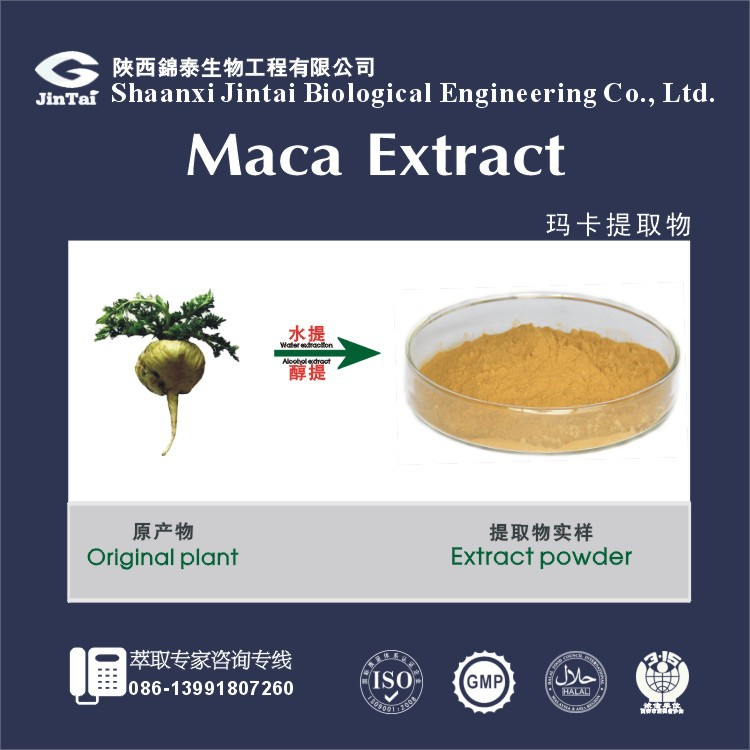 decrease energy spikes and dips maca extract 10:1