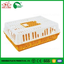 plastic poultry transport cage small poultry house