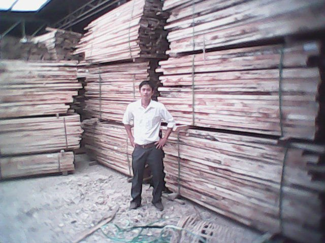 KERUING Wood in Logs