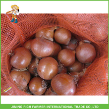 Our Factory Export Fresh Onion Fresh Onion With Competitive Price