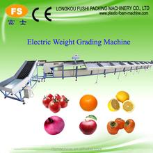 Potato and Vegetable Cleaning Waxing Drying Grading Machine