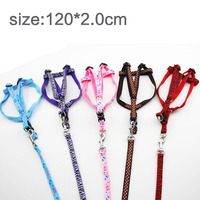 Dog chest back traction rope traction with a dog rope P chain dog dog chain dog dog dog pet dog 120*2.0cm