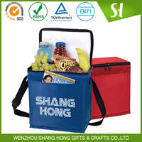 non woven material custom cooler bag/handle ice cream bag for wine with pocket
