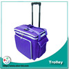 Beautiful purple color cheap travel bag trolley luggage