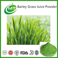 Light green good soluble Barley Grass Juice Powder