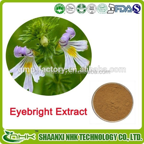 Top quality eyebright extract powder , Eyebright extract Good for Eyes
