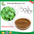 Factory Price Rosemary Extract rosmarinic Acid