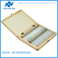 free selected 100pc/Box prepared microscope slides emphysema microscope slide