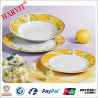 2014 Germany Dinner Set Porcelain/18Pcs Porcelain Dinnerware Set/Round Arcopal Dinnerware
