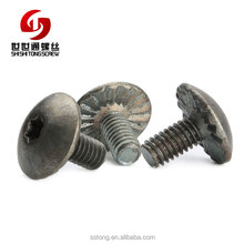 M4 Stainless Steel Truss Head Trox Screw With Sertie