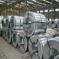 silicon steel sheet/coil