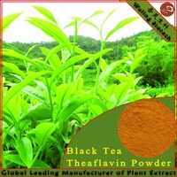 Natural Black Tea Extract 60% Theaflavin
