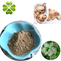 Factory supply Anti-inflammatory tuhuo radix angelicae pubescentis extract