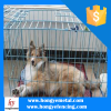 Fashion Material Small Foldable Pet Steel Cage
