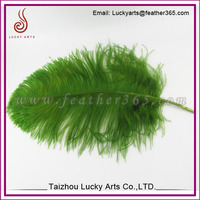 Hot sale cheaper ostrich feather fashion colorful for wedding and party