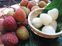 Chinese cheap price new crop natural peel IQF & frozen litchi pulp