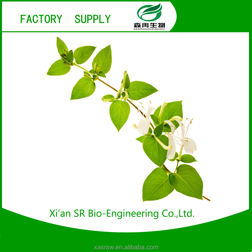 SR Best Price Of Honeysuckle Extract,Honeysuchle Flowers Extract,Extracts From Flos Lonicerae