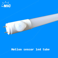 Wholesale price Frosted/Clear cover pure white 5ft 22w led T8 tube light