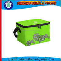 Silk Screen Printing Disposable Cooler Bags