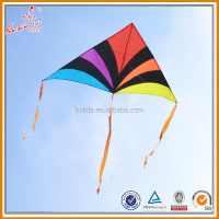 promotion detal kite flower kite from kite factory