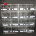 The New Type Steel Superior Fancy Pigeon Cages Racing Pigeon Breeding Cages For Sale
