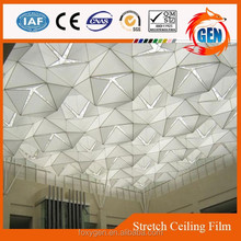 Project artificial translucent uv resistant clear pvc ceiling tiles with 15-year warranty for swimming pools