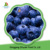 China high quality sweet delicious bulk IQF frozen blueberry prices
