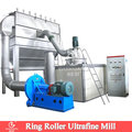 ring roller mill with 22 rollers for grinding super fine stone powder