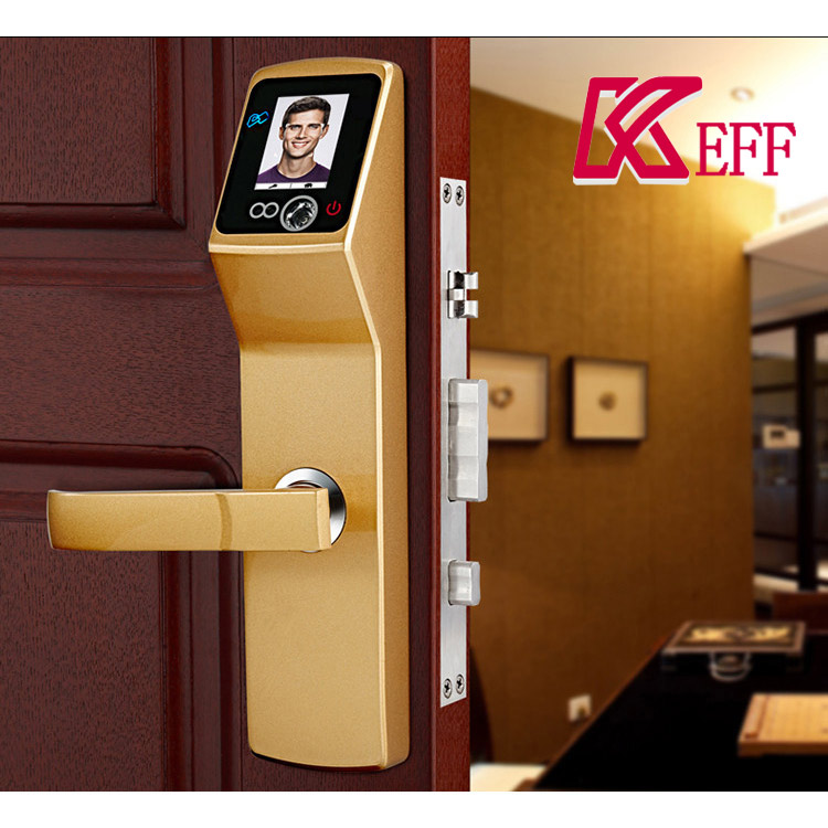Keyless House Security RFID Card Password Camera Face Recognition Door Lock Access System