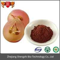 High quality grape seed extract powder full of proanthocyanidin