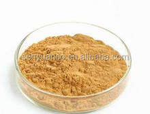 Pure Natural Dandelion Root Extract Powder