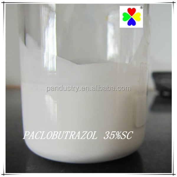 Paclobutrazol 95%TC 15%WP 35%SC 25% SC in agriculture