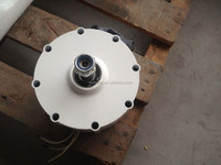 600w permanent magnet generator made in China