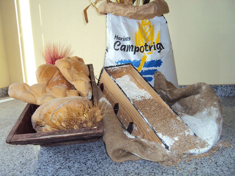 Campotrigal: Wheat Flour types 0, 00, 000, 0000