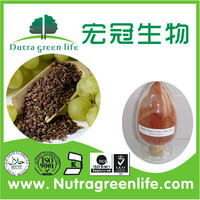 high quality grape seed extracts with low price bulk in supply/bulk grapes